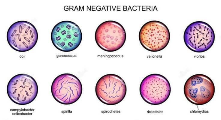 Khử trùng là gì? 5 Công nghệ khử trùng hiệu quả nhất
