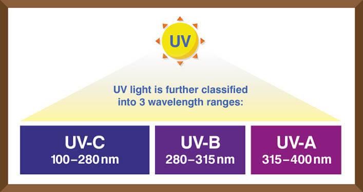 Tia cực tím là gì? Tia UV là gì?