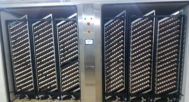 Hệ thống điều khiển và giám sát máy lò ấp trứng từ xa